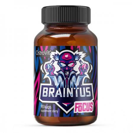 OstroVit Braintus Focus, 90 капсул